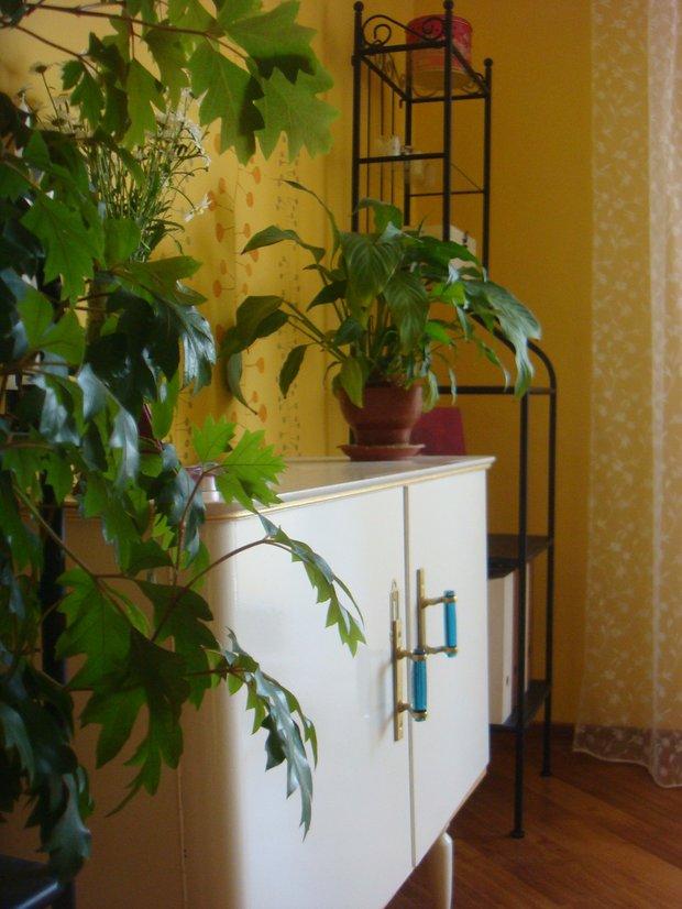 Фотография: Декор в стиле , Декор интерьера, DIY, Цвет в интерьере, Переделка, Бирюзовый – фото на INMYROOM