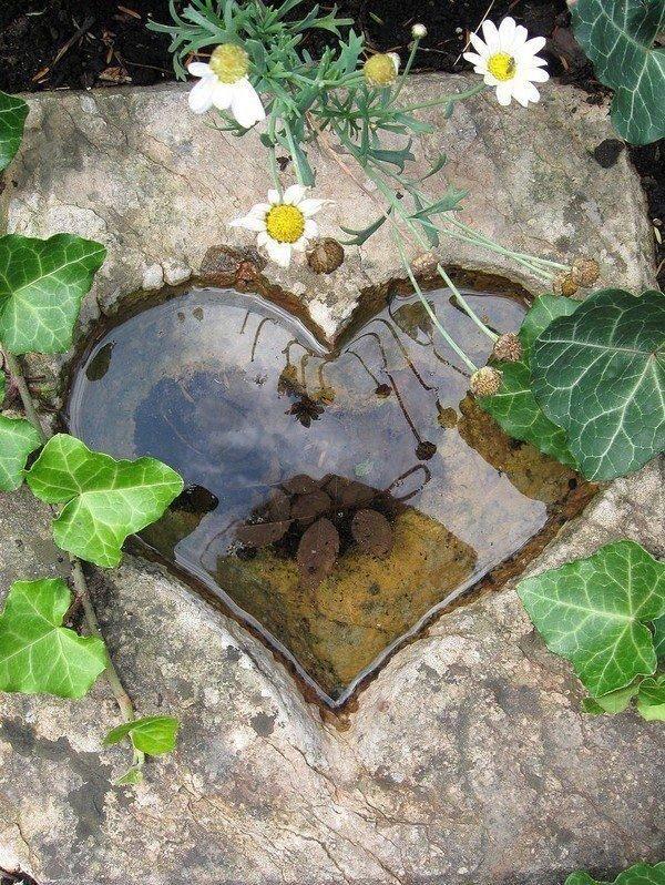 Фотография: Ландшафт в стиле , DIY, Советы, Зеленый, Дом и дача, пруд своими руками, пруд из пленки, готовые емкости для прудов, водные растения, как ухаживать за прудом, как оформить берега пруда – фото на INMYROOM