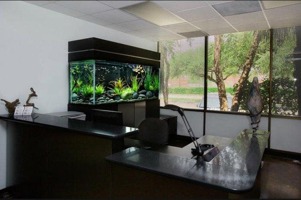 Фотография: Офис в стиле , Декор интерьера, Декор дома – фото на INMYROOM