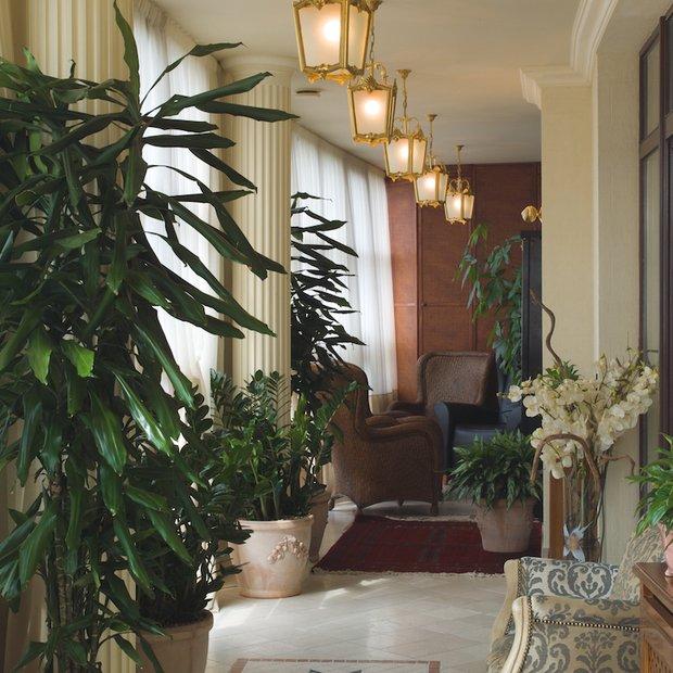 Фотография:  в стиле Классический, Современный, Декор интерьера, Флористика, Декор, Декор дома, Марат Ка, Зимний сад – фото на InMyRoom.ru