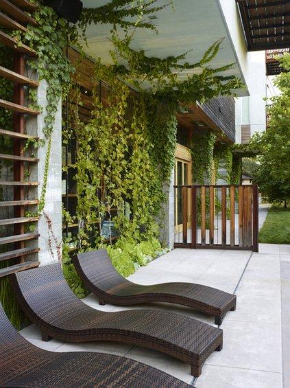 Фотография: Терраса в стиле Современный, Балкон, Флористика, Стиль жизни – фото на INMYROOM