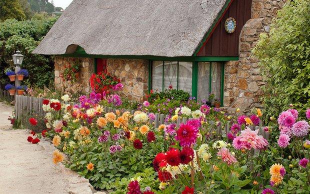 Фотография: Ландшафт в стиле , Советы, Дом и дача, Fiskars – фото на INMYROOM