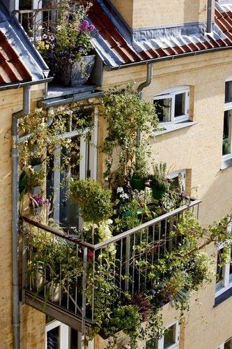 Фотография: Прихожая в стиле Скандинавский, Балкон, Квартира, Аксессуары, Мебель и свет, Терраса, Советы, Ремонт на практике, бюджетное обновление балкона, экономичный ремонт на балконе – фото на INMYROOM