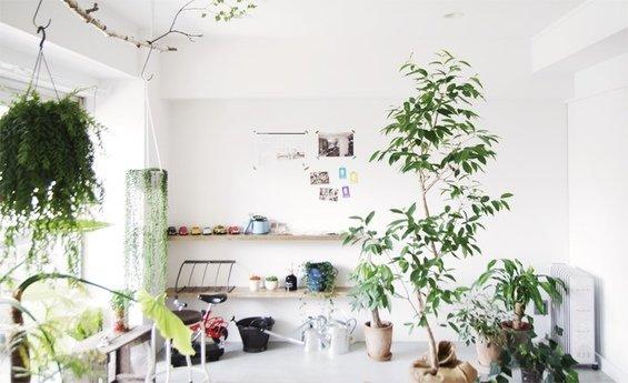 Фотография: Гостиная в стиле Скандинавский, Дом, Дома и квартиры, Япония – фото на InMyRoom.ru