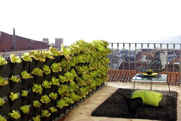 Фотография: Флористика в стиле , Балкон, Декор интерьера, DIY, Дом, Стиль жизни, Цветы, специальная тема: балконы – фото на INMYROOM
