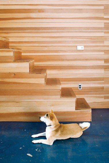 Фотография: Кухня и столовая в стиле Современный, Лофт, Дом, Дома и квартиры, Калифорния – фото на InMyRoom.ru