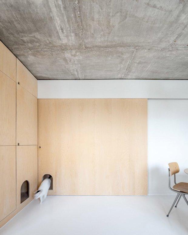 Фотография: Ванная в стиле Современный, Декор интерьера, Квартира, Франция, Париж, 4 и больше, Более 90 метров – фото на INMYROOM