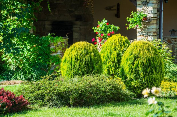 Фотография:  в стиле , Советы, дача весной, Ирина Лукьянова, работы в саду – фото на INMYROOM