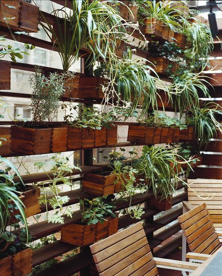 Фотография: Декор в стиле Эко, Балкон, Флористика, Стиль жизни – фото на INMYROOM