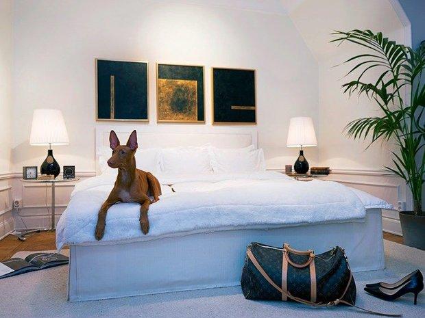 Фотография: Спальня в стиле Современный, Декор интерьера, Мебель и свет, Декор дома, Кресло – фото на INMYROOM