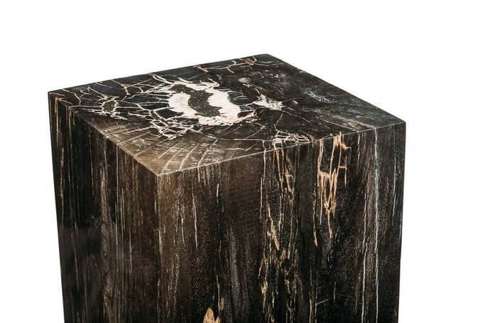 Декоративный пенек Джемур из окаменелого дерева 383395