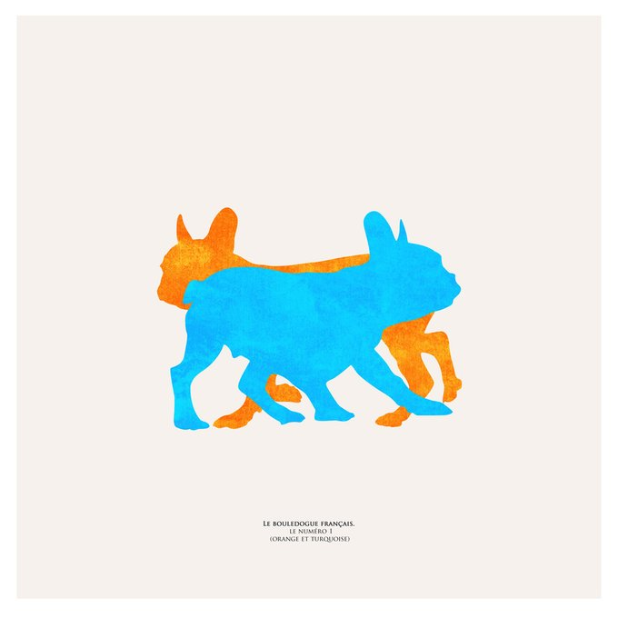Картина (репродукция, постер): Французский бульдог (оранж и бирюза) №1