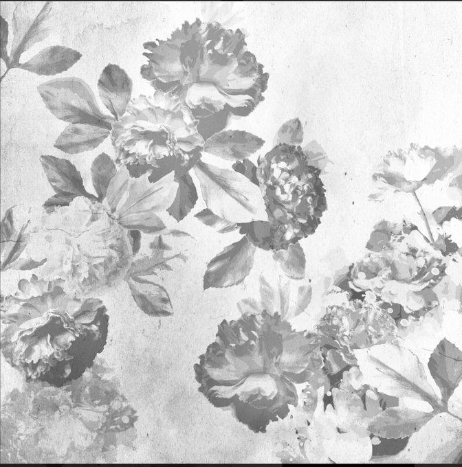 Обои Римская роза / монохром / панно на флизелиновой основе