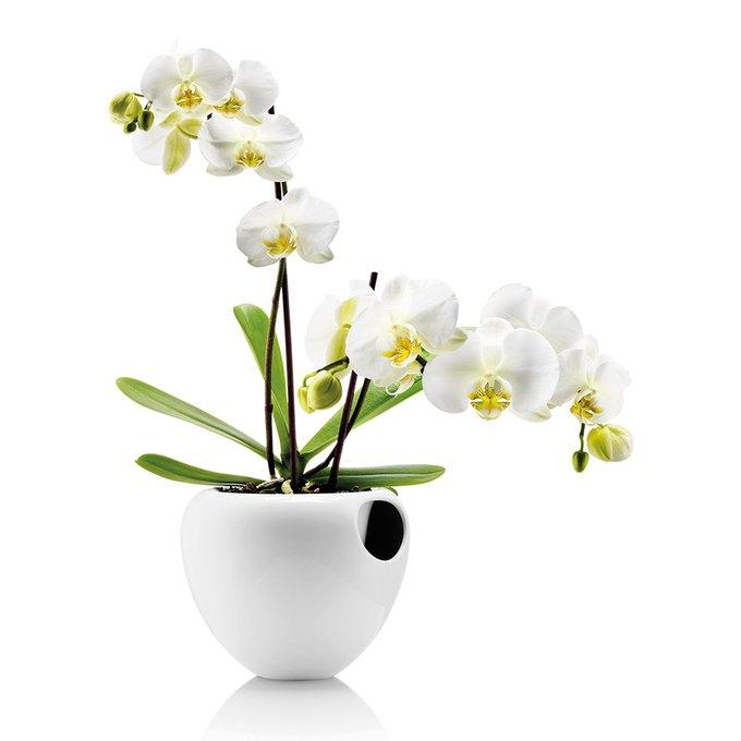 Горшок для орхидеи Eva Solo orchid pot белый