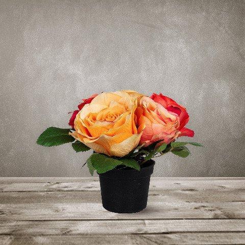 Роза в горшке  SILKKA
