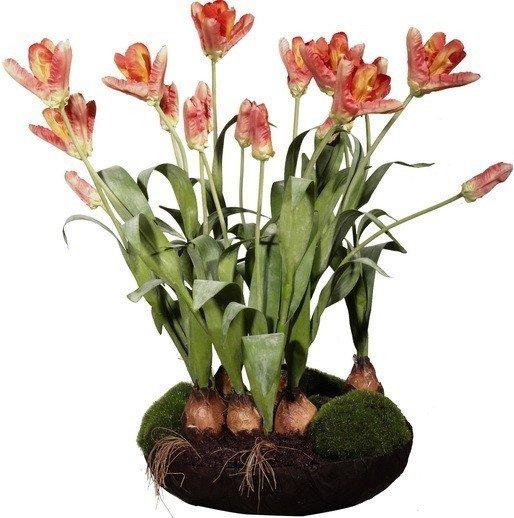 Декор Parrot Tulip