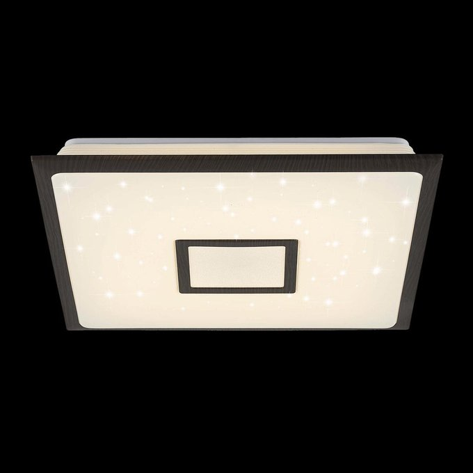 Потолочный светодиодный светильник СтарЛайт из пластика и металла
