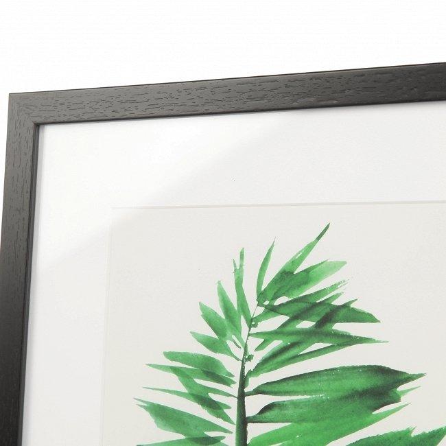Постер Palm 1 с изображением пальмового листа в раме