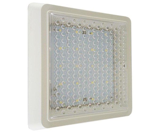 Настенно-потолочный светодиодный светильник Сигма