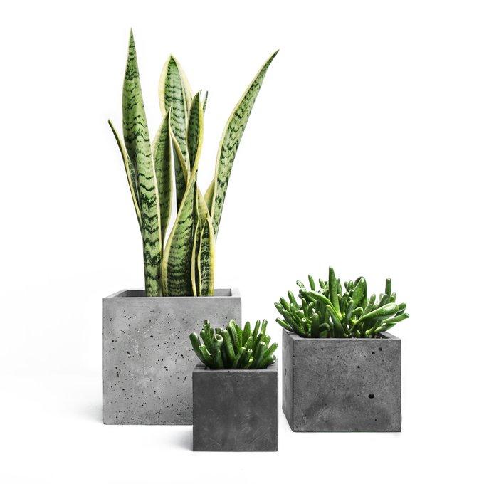 кашпо КУБ S темно-серый бетон