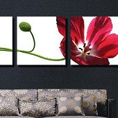 Триптих на холсте: Раскрытый тюльпан