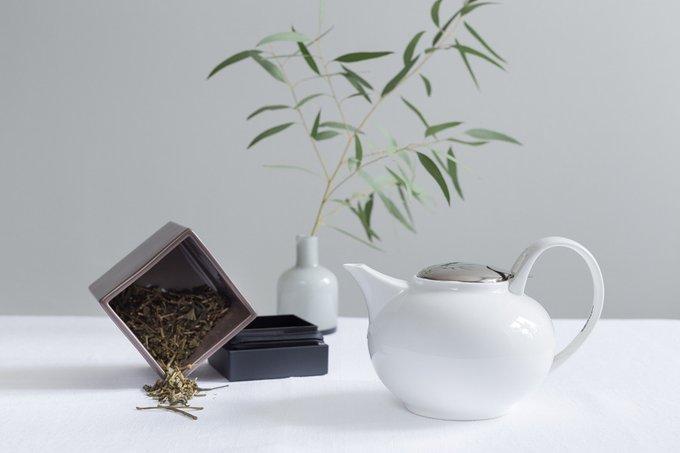 Заварочный чайник BARISTA