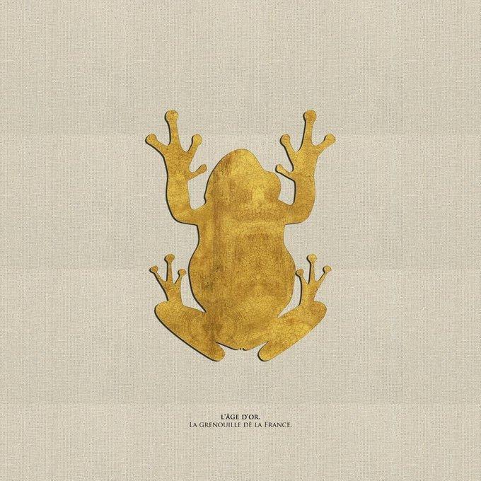 Картина (репродукция, постер): Французская лягушка
