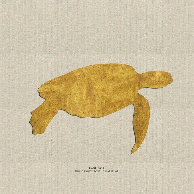 Картина (репродукция, постер): Большая морская черепаха