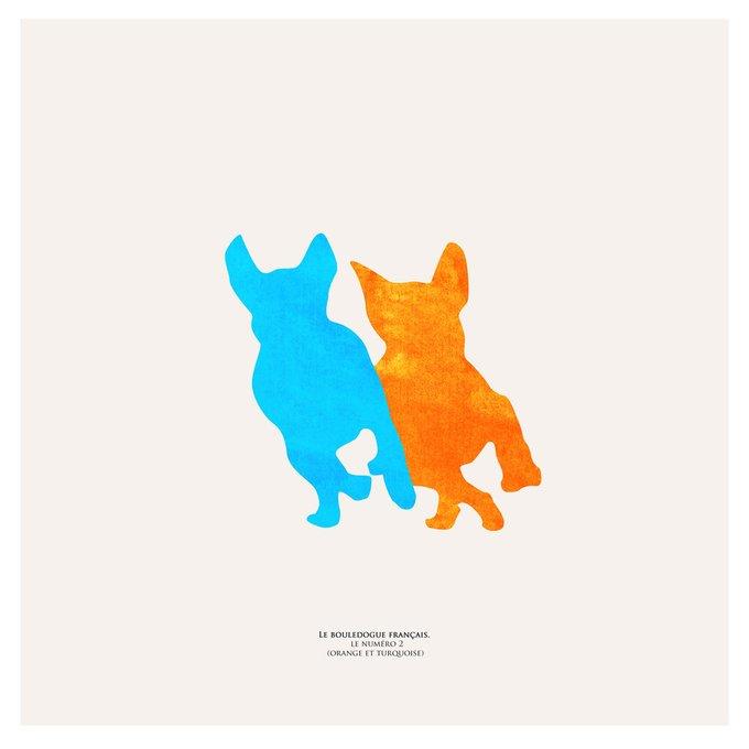 Картина (репродукция, постер): Французский бульдог (оранж и бирюза) №2