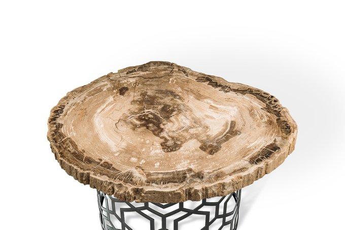 Журнальный стол Палиат из окаменелого дерева 381630