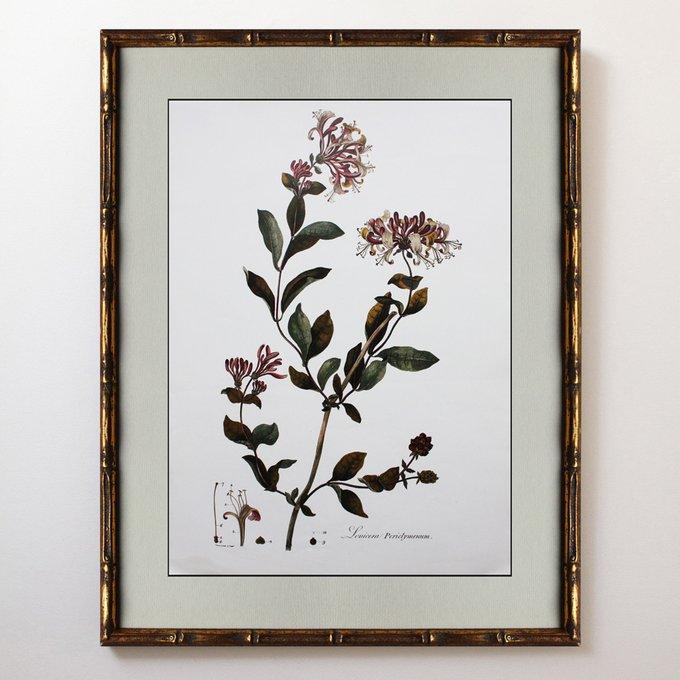 Картина Autumn flowers 0.4