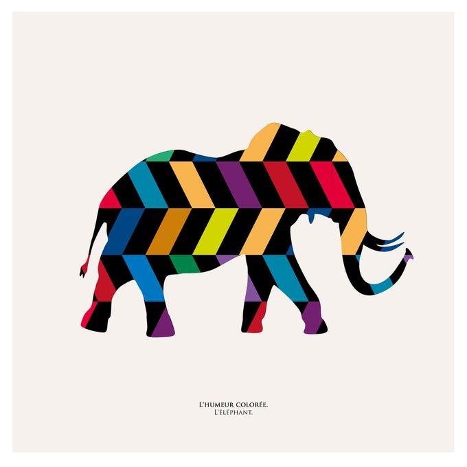"""Картина """"Семицветное настроение, слон"""""""