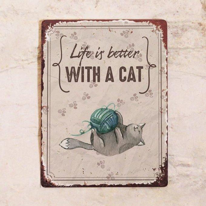 Жестяная табличка Life is better with a cat