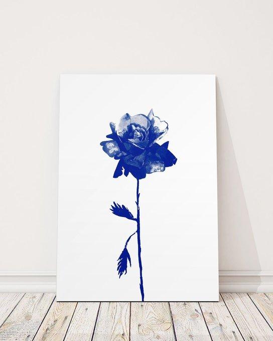 Постер Роза/кобальт на холсте