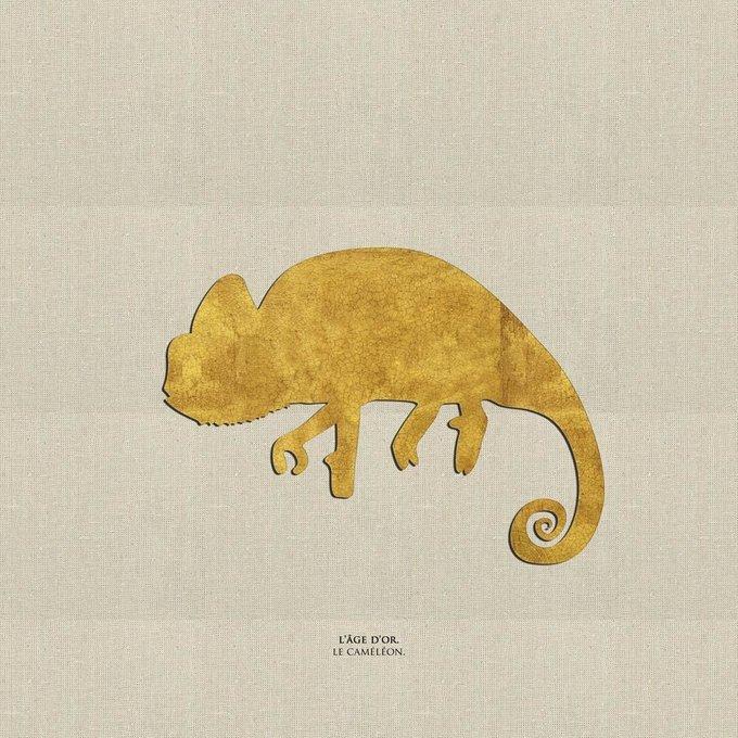 Картина (репродукция, постер): Хамелеон