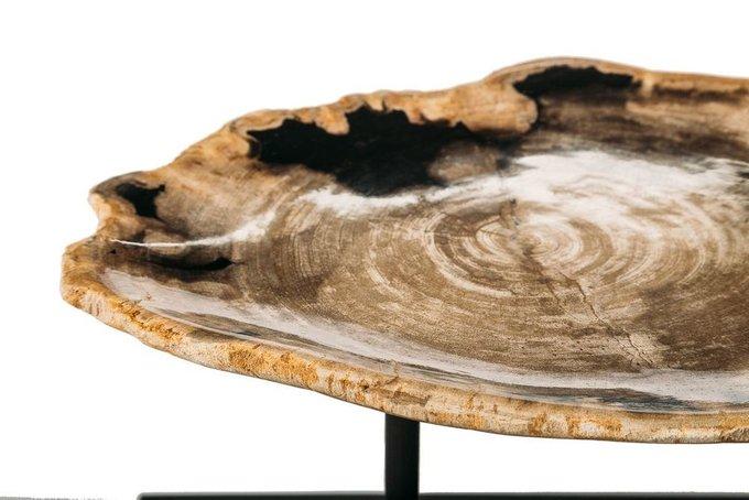 Декоративные тарелки из окаменелого дерева 382387