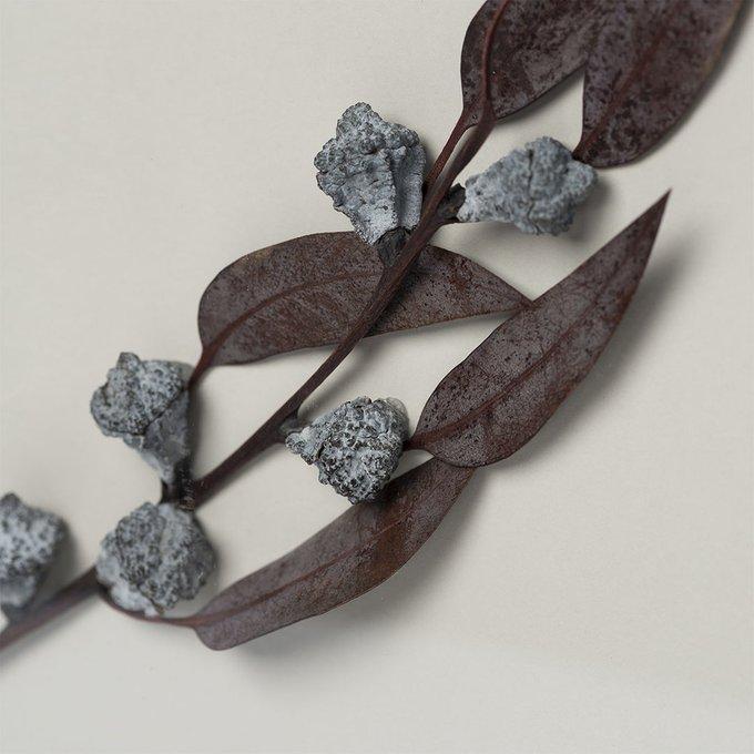 Панно с ягодами эвкалипта