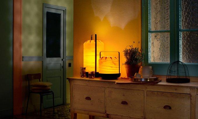 Настольная лампа LZF Chou