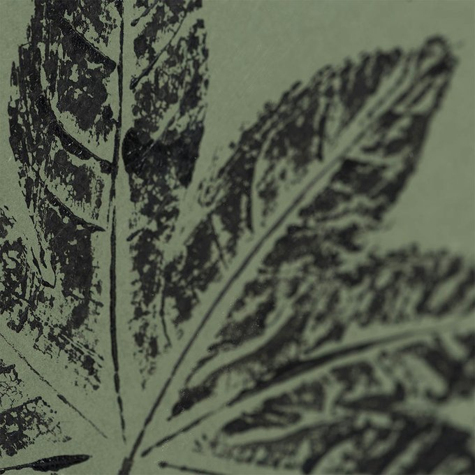 Картина с оттиском листа аралии