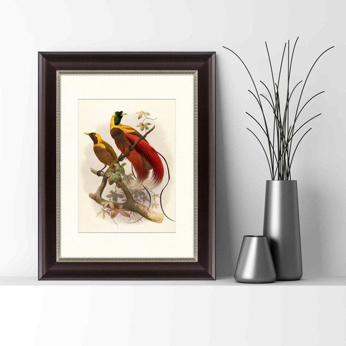 Картина Красная райская птица 1880 г.