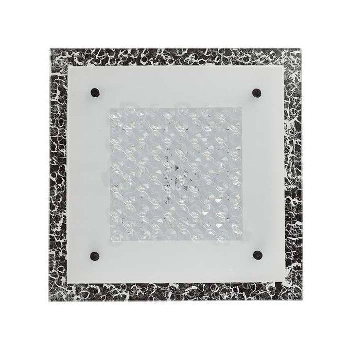 Настенно-потолочный светодиодный светильник Regino из металла и стекла