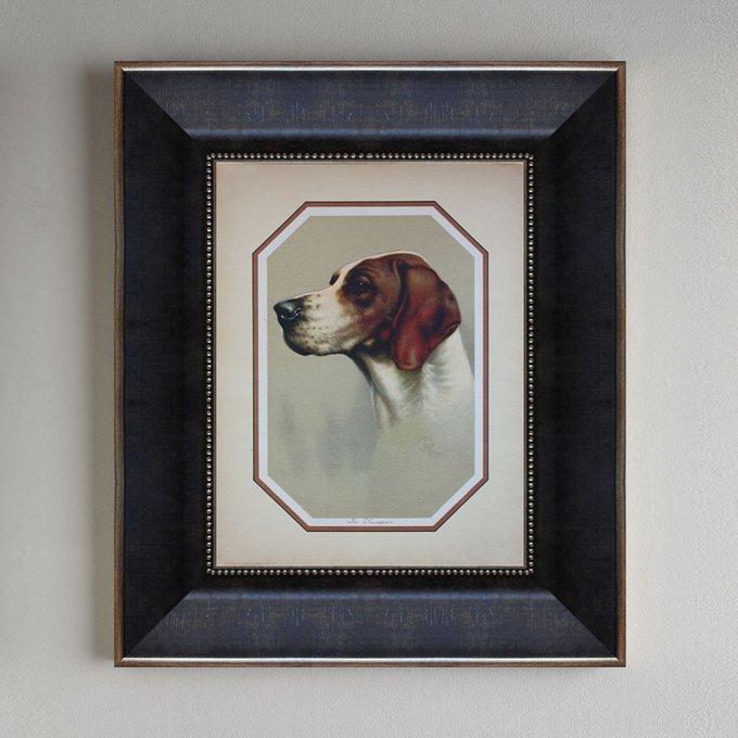 Портреты охотничьих собак 0.2