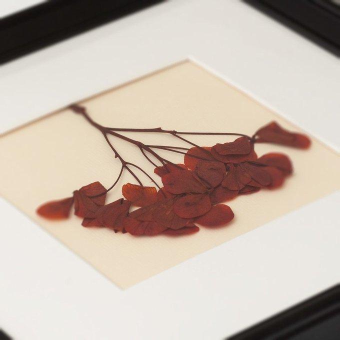 Картина с бордовой гортензией