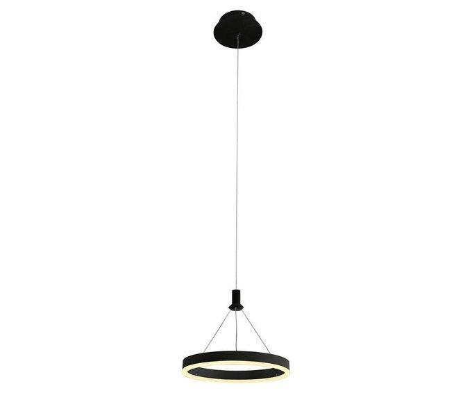 Подвесной светодиодный светильник Тор  черного цвета