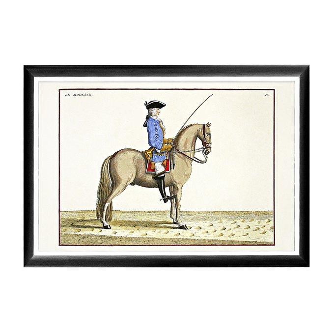 Арт-постер Верховая езда Урок № 6