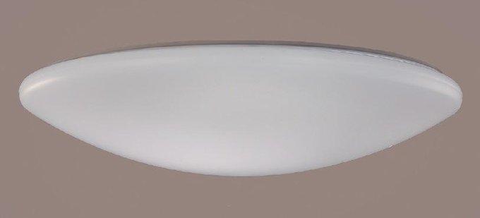Потолочный светодиодный светильник Luna из металла и пластика