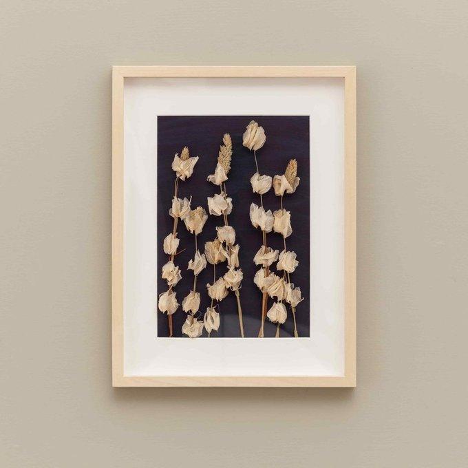 Панно с полевыми сухоцветами