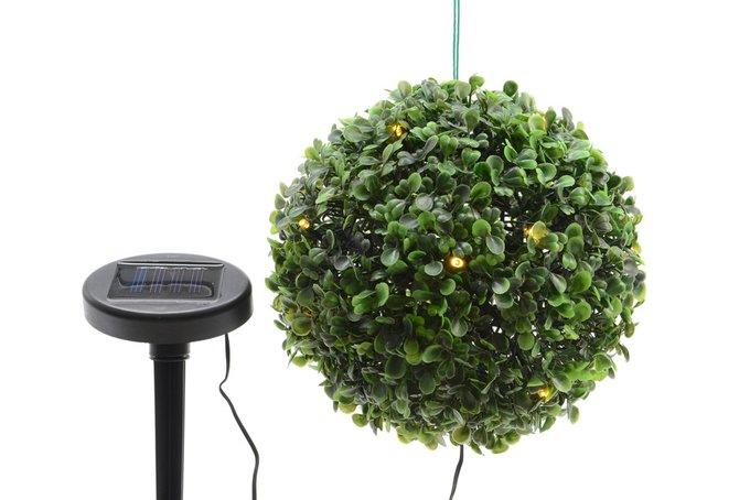 Искусственное растение с LED светильником Самшит