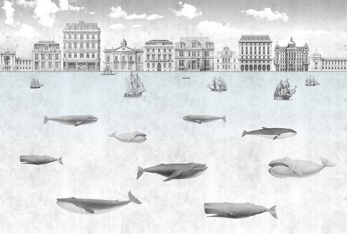 Фотообои  Whales 1 в серых тонах
