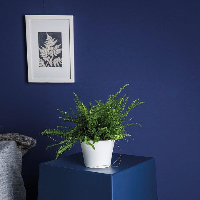Органайзер Pottichelli голубого цвета